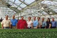 Oglesby Plants: Liner Pioneers