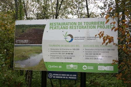 Slideshow: Tour A Restored Peatland