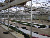 Slideshow: Tornado Strikes N.G. Heimos Greenhouse