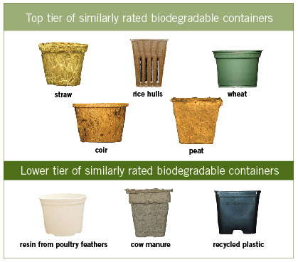 The Value Of Biodegradable Containers