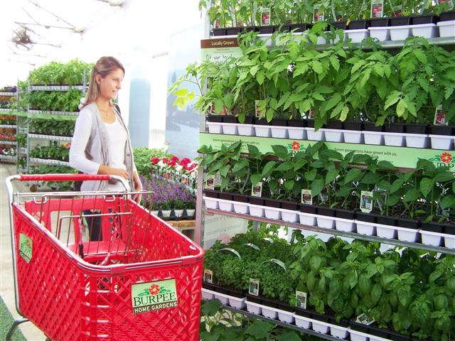 Burpee Home Gardens Brand Adds Flowers Greenhouse Grower