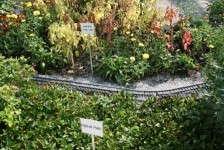 Slideshow: Michigan State University Trial Gardens