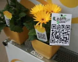 QR Codes Becoming More Prevalent