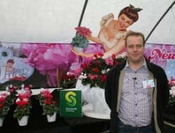 Schoneveld Shows Off Jive Cyclamen