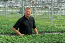 Battlefield Farms and Costa Farms Transition To Young Plant Suppliers