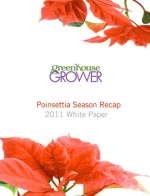 Poinsettia Season 2010 Recap: Making The Most Of Poinsettias