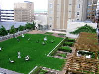 Slideshow: More Green Roofs