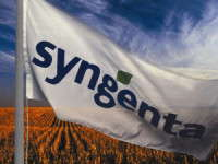 Reaction To Syngenta's Purchase Positive