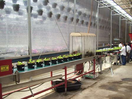 Garden State's Conveyors: Advanced Automation