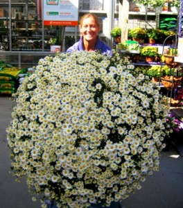 Bell Nursery's Gary Mangum Provides Insight on Deal With Central Garden & Pet