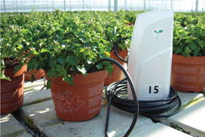 Precision Horticulture: What Piece Of Equipment Or System Helps You Streamline Production?