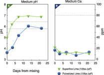Understanding Plant Nutrition: Limestone, Calcium And Magnesium