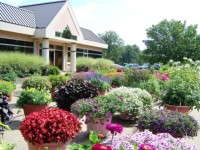Slideshow: Grimes Horticulture's Trial Gardens