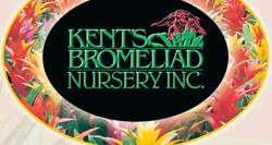 Kent's Bromeliad Nursery