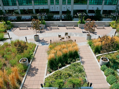 Green Roofs Offer Sky-High Possibilities