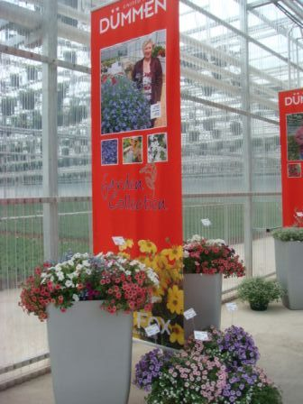 CK Greenhouses Hosts Open House