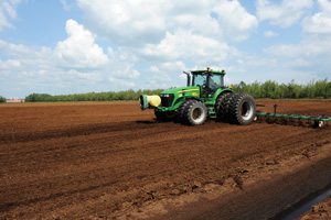 The Peat Report: How Producers Harvest