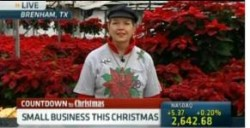 Video: PJ Ellison Talks Poinsettias On CNBC