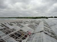 Midwest Growers Weather Storms