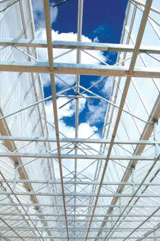 Outfitting Your Greenhouse