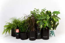 Root Pouch plant pots