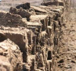 Block-cut Lithuanian peat