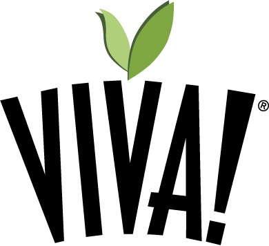 VIVA! Announces Dahlia XXL For Spring 2012