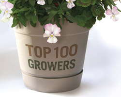The Top 100 Growers Find Diversity Provides More Security