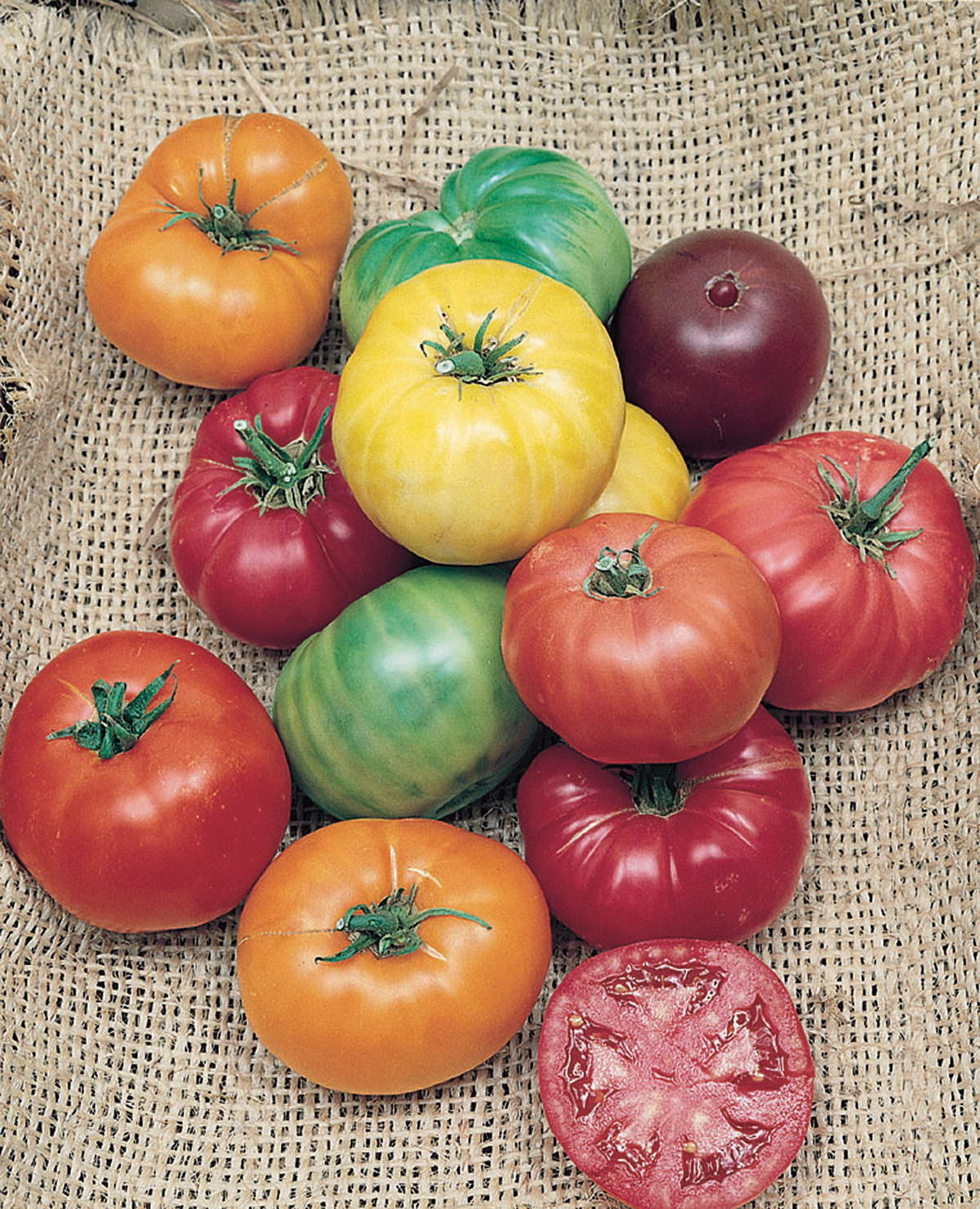 Vegetable And Fruit Variety Introductions