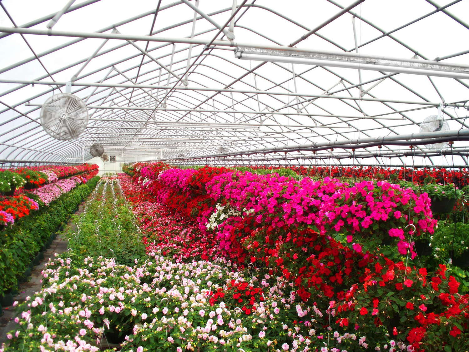 Grow Ornamentals, Vegetables Under One Roof With Atlas Manufacturing