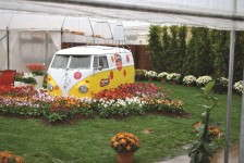 Florist tapped into the power of flowers by incorporating a Volkswagen bus into  its display.