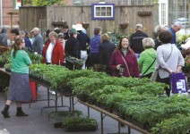 More than 1,000 people came out to participate in Plantapalooza.