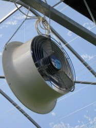Mount HAF fans above or below hanging baskets for proper airflow.