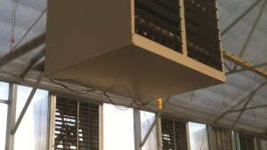 Smart Greenhouse Heating Saves Money