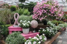 The pink ribbon display at Meadow View Growers