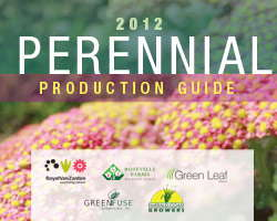 Perennial Production Tips Guide