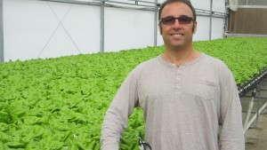 Bella Verdi Farms Focuses On Efficient Greenhouse Vegetable Production