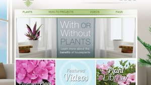New Delray Plants Website Targeted At Consumers