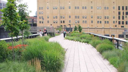 We Could Be Growing More Green Infrastructure Plants That Work, Says Shannon Currey
