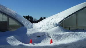 10 Snow-Related Causes Of Greenhouse Failure