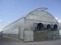 This research greenhouse at the University of Arizona is being used to develop advanced climate control strategies for a naturally vented greenhouse equipped with high-pressure fogging.