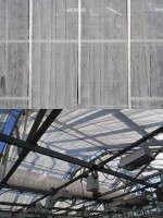 Greenhouse–shade compound, whitewash
