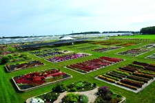 At the Trial Gardens at C. Raker & Sons, more than 2,000 varieties are measured, graded and recorded weekly.