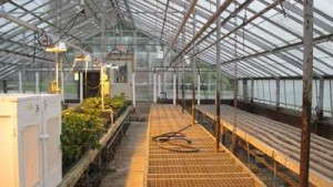 Time to Upgrade Your Greenhouse Operation?