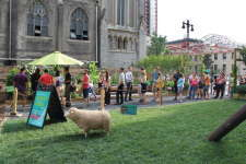 The Pennsylvania Horticulture Society aims to improve Philadelphia landscapes while bringing the public together to enjoy horticulture and the arts in its annual pop-up gardens.