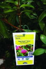 Quickattach clips from Horticultural Marketing & Printing