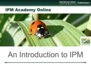 MSU IPM webinars