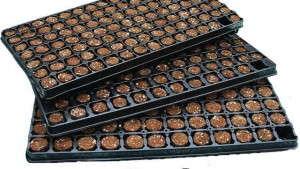 Fertiss Growing Medium from Oasis Grower Solutions