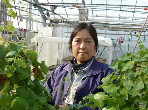 Yosuko Isobe Breeder Suntory Flowers Limited