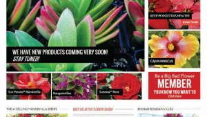 Selling Plants Online: Conquering The Next Frontier